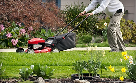 Two Lawn Cuts or Lawn Fertilization and Lawn Cut from First Choice Lawn Care