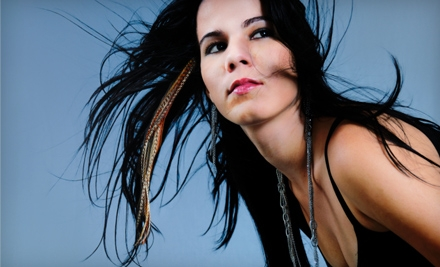 Feather Extensions or Haircut Package at The Salon in Ames
