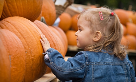 Fall-Activity Outing for Two or Four at Crooked Pines Farm
