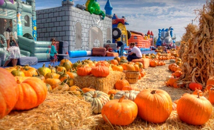 All-Day Pass for One, Two, or Four to Pick of the Patch Pumpkins at ABC Tree Farms