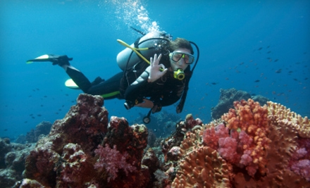 Discover Scuba Diving Experience for One, Two, or Four at Pro Ski and Scuba