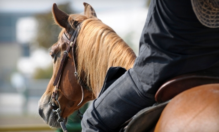 $35 for Two Basic Western Horse-Riding Lessons at Serenity Stables & Events Facility ($70 Value)