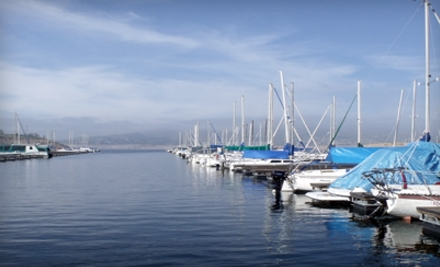 $89 for a Half-Day Pontoon-Boat Rental from Millerton Lake Marina in Friant ($180 Value)