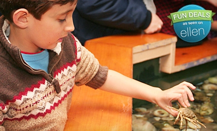 $15 for a Save the Bay Exploration Center & Aquarium Outing for a Family of Four in Newport (Up to $31 Value)