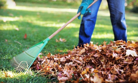 Four-Trip Leaf-Removal Package from Techno-Turf (Up to Half Off)