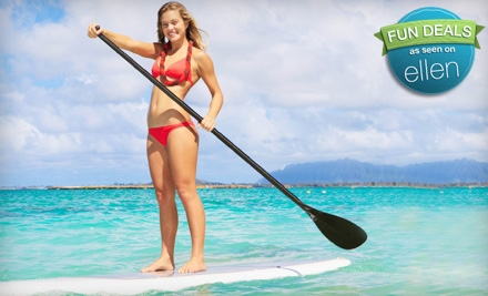 Beginner Standup Paddleboard Lesson and Wildlife Tour for One or Two from Channel Islands Kayak Center (Up to 67% Off)