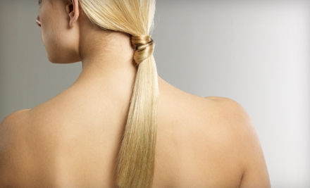 $149 for a Brazilian Blowout Hair-Smoothing Treatment at Brazilian Blowout Knoxville (Up to $350 Value)