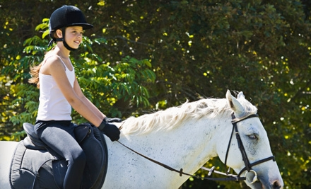$25 for English Horseback-Riding Experience at Chiron Equestrian Services in Saco ($50 Value)