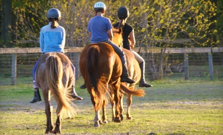 $50 for a One-Hour Guided Horseback Trail Ride for Two at Stono River Riding Academy on Johns Island ($110 Value)