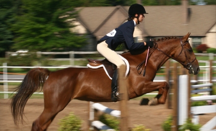 One-Hour Private Horseback-Riding-and-Grooming Lesson for One or Two in Indoor or Outdoor Ring at Spruce Meadow Farm in Clarence (Up to 71% Off)