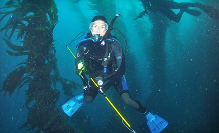 Discover Scuba Course, Nitrox Course, or Complete Diver Workshop at Ye Ol' Dive Shop of Simi Valley (Up to 75% Off)