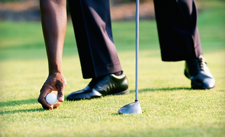 $45 for Two 45-Minute Private Lessons with PGA Master Pro Walter Ostroske at Merrick Road Golf Course ($110 Value)