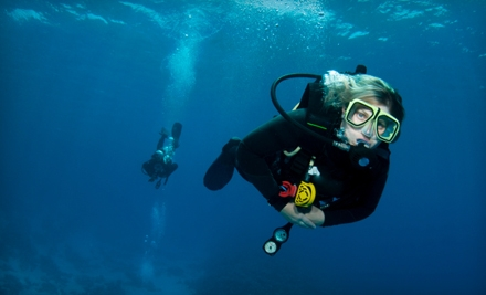 Scuba Classes at Scuba Schools of America in Montclair (Up to 80% Off). Three Options Available.