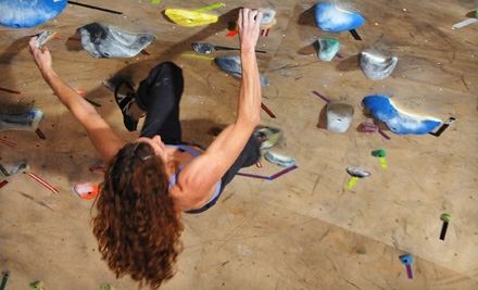 One-Day Gym Outing, Five Visits, or a One-Month Membership to The Front Climbing Club (Up to 63% Off)
