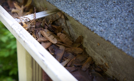 Gutter-Cleaning Services for a Small, Medium, or Large Roof from Outdoor Oasis (Up to 64% Off)
