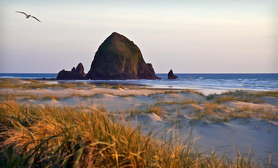 Haystack LodgingsTwo-Night Stay for Two at the Inn at Haystack Rock or the Blue Gull Inn from Haystack Lodgings in Oregon. Three Options Available.