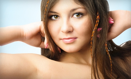 Cut, Color, and Style or Feather and Tinsel Hair Extensions at Donna LiAne's Color & Extensions Studio (Up to 56% Off)