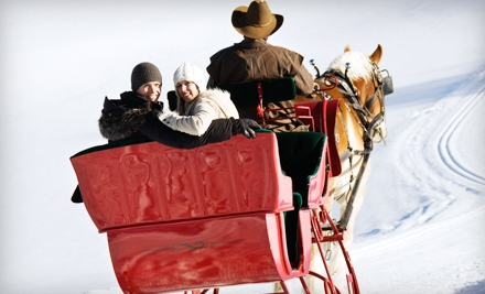 $75 for a 30-Minute Horse-Drawn Sleigh- or Carriage-Ride Experience for Four from Ma & Pa's in Burton ($150 Value)