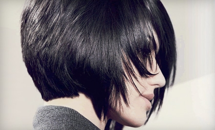 $20 for $40 Worth of Hair Services at Regis Salons