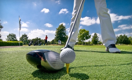 $179 for a VIP Golf Package at Wildcat Golf Club (Up to $1,015 Value)
