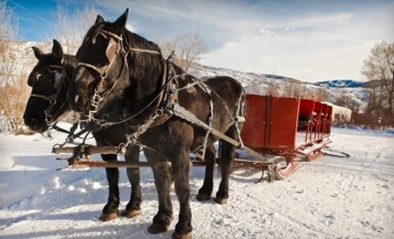 $15 for a 30-Minute Holiday Sleigh Ride Through Sawmill Trailhead from Mount Charleston Trail Rides ($30 Value)