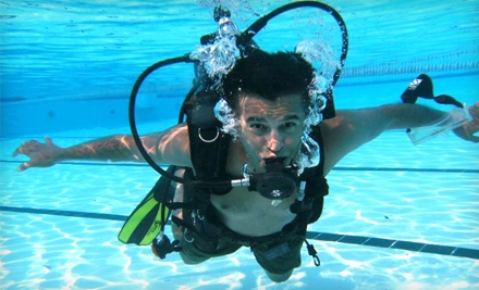 PADI Open Water Diver Certification Package or Discover Scuba Diving Course at Gigglin' Marlin Divers (Up to 60% Off)