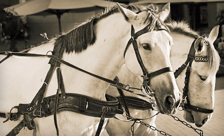 $35 for a Holiday Carriage Outing and Photo with Santa for Six from Elegant Carriages in Covington (Up to $75 Value)