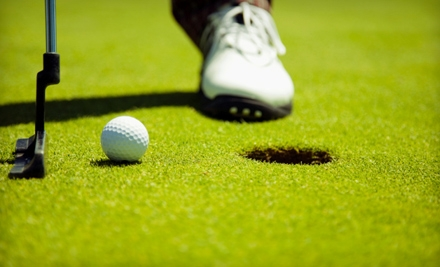 One, Three, or Six Private Golf Lessons from AuseGolf (Up to 53% Off)