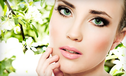 Custom Facial or Makeup Lesson with Eyebrow Wax at Aesthetic Amour in Hudson (Up to 70% Off)
