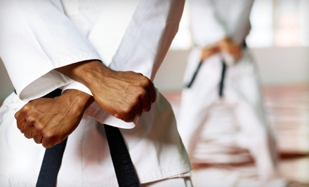Two Months of Judo and Brazilian Jujitsu Classes or 10 Classes at American Fight Club (Up to 74% Off)